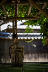 児島 (keitaro hirosaki) Tags: fa77 pentax street ペンタックス sony fa77limited 倉敷 α7ⅱ streetphotograph