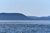 Orcas Island (Shannon L. Castor) Tags: orcasisland washington water ocean