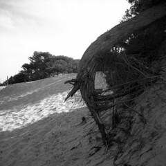 Alimini beach - Otranto (Puglia) - April 2018 (cava961) Tags: alimini beach otranto puglia monocromo monochrome analogue analogico bianconero bw 6x6