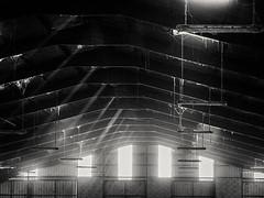 20090417-027 (sulamith.sallmann) Tags: effekte licht vermischtes animals aveyron bw europa france frankreich midipyrénées stable stall ställe sw tier tiere tierhaltung vinemente midipyrénéesauveyron fra sulamithsallmann