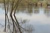 Отражение (allav.patrakova) Tags: water nature river spring sky природа река вода отражение деревья весна