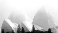 Dense Fog in Sydney (gerard eder) Tags: world travel reise viajes australia newsouthwales nsw sydney opera opernhaus operahouse fog architecture architektur arquitectura blackandwhite blackwhite blancoynegro bw sw outdoor modernarchitecture minimalism monochrome