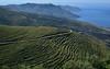 Mani 9 (orientalizing) Tags: desktop featured greece landscape mani mountains mountanistika seascape southernpeloponnese tayegetosmassif terracing
