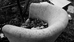 Verwaister Sessel / orphaned armchair (Lichtabfall) Tags: sessel armchair blackandwhite blackwhite bw buchholzidn buchholz schwarzweiss monochome einfarbig verlassen abandoned