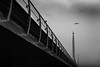 It's all in the wings / waiting  my turn (Özgür Gürgey) Tags: 2018 50mm bw d750 nikon architecture birds bridge flying grainy lines sky street istanbul diagonal repetition
