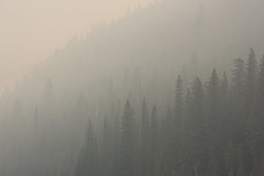 Gradients (stochastic-light) Tags: landscape trees gradient smoke fire wildfire forestfire spraguecreekfire abstract montana nature fireseason glaciernationalpark nps nationalparkservice nikon d810 zeiss carlzeiss zf2 milvus2135 milvus135 apo apochromat