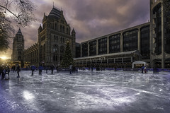 Skating at the Natural History Museum (Alec_Hickman) Tags: london christmas museum naturalhistorymuseum city urban ice rink skating tree architecture buildings sunset people clouds sky light