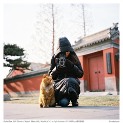 Take some pictures in Forbidden City (derek*werner) Tags: rolleiflex rollei tlr film ektar100 kodak beijing forbiddencity girl cat analog 120 6x6