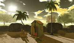 Life On the Beach (aerlinniel.roughneck) Tags: relayforlifehomegardenexpo sahidesigns