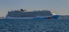 The Norwegian Breakaway in Öresund (frankmh) Tags: ship cruiseship norwegianbreakaway öresund denmark