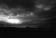 A light in the dark (Rosenthal Photography) Tags: washis50 20180501 rodinal12520°c11min bnw ff135 schwarzweiss bw 35mm olympus35rd analog asa50 landscape fields trees spring mood march april blackandwhite light sun black dark darkness daysofdarkness olympus olympus35 35rd fzuiko zuiko 40mm f17 washi washis 50asa rodinal 125 epson v800