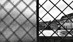 duetto (Rino Alessandrini) Tags: backgrounds steel architecture window abstract reflection pattern glassmaterial modern metal design blue blackcolor grid builtstructure closeup outdoors finestra griglia metallo vetro chiuso aperto bn bianconero interno cortile courtyard ombre shadows
