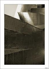 La mejor defensa, una coraza (V- strom) Tags: monocromo monochrome arquitectura arquitecture titanio titanium brillo brillant líneas lines españa bilbao museoguggenheim guggenheimmuseum metal viaje travel recuerdo memory luz light nikon nikon24120 volúmenes volumes texturas textures nikond700