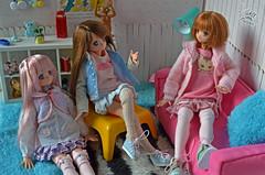 1 (Welt Der Puppen) Tags: anime azone pureneemo manga doll muñeca 16 cat gato meow alissa maya fannyfanny fanny pullip barbie pullipmocha barbiemadetomove curvybarbie curvy pullips