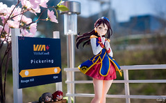 _DSC5011_13 copy (GaleXV) Tags: jfigure bfigure toyphotography sony a6300 outdoor lovelivesunshine lovelive rikosakurauchi happypartytrain aqours furyu