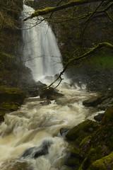 Rhaeadr Melin y Cwrt / Melincourt Waterfall (CoasterMadMatt) Tags: sgwdrhydyrhesg2018 mellincwrtfalls2018 rhaeadrmelinycwrt2018 melincourtwaterfall2018 sgwdrhydyrhesg mellincwrtfalls rhaeadrmelinycwrt melincourtwaterfall sgwd rhydyrhesg mellincwrt falls rhaeadr melin cwrt melincourt waterfall waterfalls fall waterfallsofwales welshwaterfalls waterfallcountry riverneath afonneath river rivers neath neathattractions resolfen resolven bwrdeistrefsirolcastellneddporttalbot bwrdeistref sirol castellnedd port talbot decymru southwales de cymru south wales europe britain greatbritain gb unitedkingdom uk march2018 winter2018 march winter 2018 coastermadmattphotography coastermadmatt photos photography photographs nikond3200