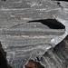 Rhyodacite vitrophyre (Llao Rock Rhyodacite, Holocene, ~7.8-7.9 ka; roadcut near Llao Rock, margin of Crater Lake Caldera, Oregon, USA) 61