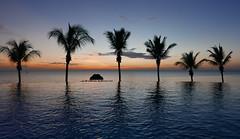 Six in a row (louise peters) Tags: sundown sunset zonsondergang sea zee sky trees bomen palmtree palmbomen swimmingpool infinitypool zwembad water jetty pier mangapwani zanzibar tanzania afrika africa seascape zeegezicht indianocean indischeoceaan