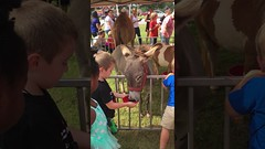 07.28.17 Chik Fil A Junior Safari Night at Atlanta Highway https://youtu.be/qhaHNio_eDU iPlanets Academy 24 Hours Child Care | Day Care | Pre-K | Preschool | After School | Summer Camp (Root N Wings Christian Learning Center) Tags: ifttt youtube 072817 chik fil a junior safari night atlanta highway iplanets academy 24 hours child care | day prek preschool after school summer camp
