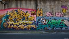 IMGP9777 Faces (Claudio e Lucia Images around the world) Tags: murales graffiti streetart milano vialemonza ferrovia via pontano milanese pentax pentaxk3ii sigma sigma1020 pittura face faccia murale art viapadova padova persone muro