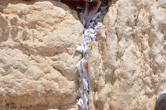DBN_7870 (David_North) Tags: northholylands2018 israel jerusalem templemount