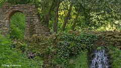 Ninesprings Yeovil (DougRobertson) Tags: ninesprings yeovil somerset scenery woodland tree waterfall water