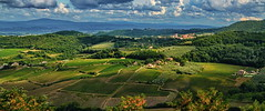 Toscana, Wineyards Country (gerard eder) Tags: world travel reise viajes europa europe italy italia italien tuscany toscana toskana valdorcia wineyards landscape landschaft landwirtschaft agricultura agriculture paisajes panorama weinanbau outdoor natur nature naturaleza