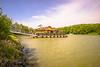 The floating restaurant on the old arm of the Danube (a7m2) Tags: danube altarm donau greifensten loweraustria restaurant travel tourismus radfahren wandern schwimmen schiffe boote wassersport