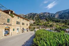 Mallorca20180415-08319 (franky1st) Tags: spanien mallorca palma insel travel spring balearen urlaub reise