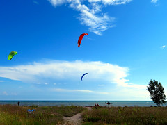 Kites at the Beach, Cobourg Ontario (duaneschermerhorn) Tags: kite beach tree people sky clouds blue white green brown underbrush undergrowth path water lake lakeontario