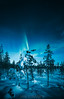 Rising flames (janiylinampa) Tags: northernlights auroraborealis aurora auroras revontulet nordlicht polarlicht nordlys norrsken rovaniemi lapland finland lappi suomi laponie laponia lappland finnland white green blue trees stars nightphotography ice snow winter talvi