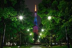 GW Special (Joe-Chang) Tags: a7riii night landscape ilce7rm3 sony 芝公園4号地 loxia loxia2821 芝公園 tokyotower 東京鐵塔 東京タワー 港区 carlzeiss 東京 japan distagon 関東 zeiss 日本 夜景 風景 a7r3 7rm3 minatoku tōkyōto jp tokyo