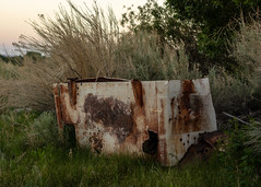 Old Freezer (dwblakey) Tags: california appliance owensvalley outdoors freezer easternsierra bishop rusty rust history lowpov evening junk walk unitedstates us