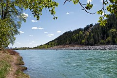 The river in springtime (jmschrei) Tags: alberta bowriver calgary da1685 landscape pentaxkp river trees water