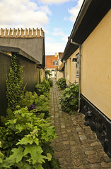 A9822DENMb (preacher43) Tags: dragør denmark building architecture house home trees flower sky clouds alley walkway