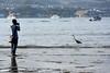 Miyajima - rising tide (Howard_Pulling) Tags: hiroshima japan nikon howardpulling
