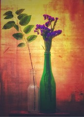 Background Noise (mteter73@att.net) Tags: flowers glass layered dream color light theatre dramatic stilllife textures