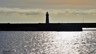 Brand New Day in Donaghadee