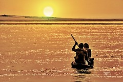 BRAHMPUTRA.     On good days I row.....on bad days I row harder... (mustang8055) Tags: golden mighty hue dawn dusk glow sunset boat row river brahmputra