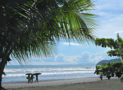 Surfers (Colorado Sands) Tags: jaco costarica beach palmtree surfers centralamerica puravida pacific costarican tropical ocean water