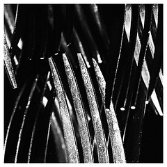 066 of 365 - Utensils (Weils Piuk) Tags: photoblog365 utensils fork mirror light reflection black background studio abstraction minimalist bw white lines