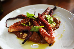 20180510-62-Grilled octopus at Kensington Street Social in Sydney (Roger T Wong) Tags: 2018 australia iv kensingtonstreetsocial metabones nsw newsouthwales rogertwong sigma50macro sigma50mmf28exdgmacro smartadapter sonya7iii sonyalpha7iii sonyilce7m3 sydney food octopus restaurant