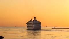 IJmondhaven: Golden Hour (tribsa2) Tags: nederlandvandaag sunrisesunset sunset seaside sky seascape shoreline sea ship schip vessel nederland netherlands noordpier