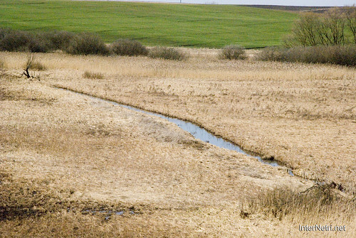 Зимно Річка Луга InterNetri Ukraine 139