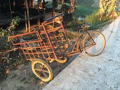 Myanmar, Yangon Region, Northern District, Htantabin Township, Kywe Ku Village Tract (Die Welt, wie ich sie vorfand) Tags: bicycle transportbicycle myanmar burma yangonregion yangon rangoon northerndistrict htantabintownship htantabin kyweku