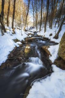Arroyos entre la nieve