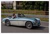 milledue (Outlaw Pete 65) Tags: automobile car corsa race piloti drivers strada road staccionata fence alberi trees colori colours millemiglia fujixe3 fujinon1855mm brescia lombardia italia