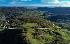 Lot 24 Lambs Valley Road, Lambs Valley NSW