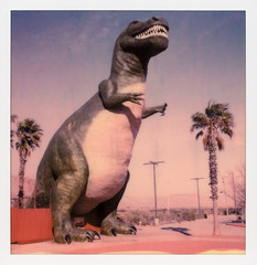 Mr. Rex (tobysx70) Tags: polaroid originals color 600 instant film slr680 roidweek roid week polaroidweek spring april 2018 mr rex cabazon california ca dinosaur tyrannosaurus palm tree blue sky mojave desert polaroadtrip polawalk 030818 day5 toby hancock photography