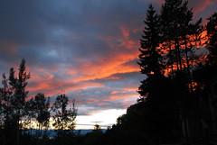 029 (RD1630) Tags: vernon britishcolumbia canada kanada landscape landschaft outside outdoor nordamerika north america travel reise